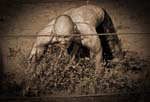 pouding it with intensity | Mud Run | Warrior Run | Sepia Tone